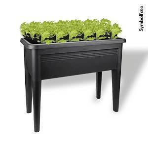 Balkonhochbeet Green Basics